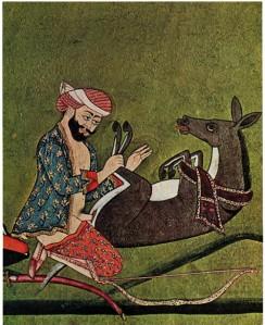 zoofilia-islam (1)