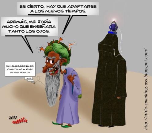 20110121-Burka-web-cam