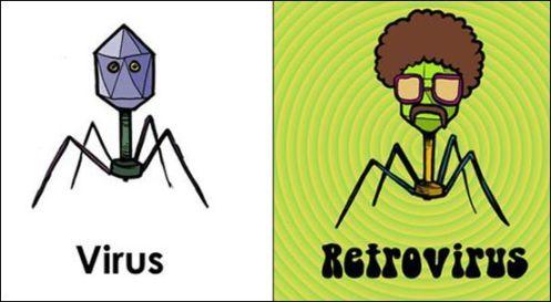 Virus vs Retrovirus