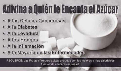 frutosmedicinales-blogspot-com