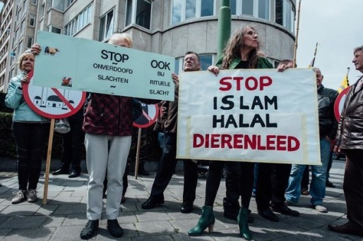 stop-islam-zakia-belkhiri