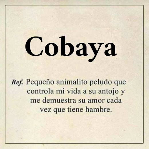 COBAYAS MEMES4